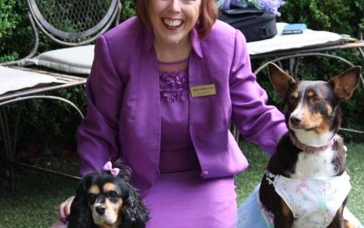 Melbourne Celebrant: Pets At Weddings Tips